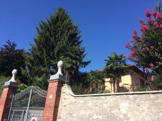 Piazza Rossi di Montelera - Pianezza (To)